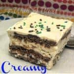 Creamy Nutella & Cookie Ice-Cream