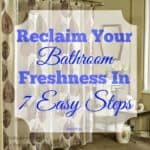 Bathroom Freshness in 7 Trouble Free Steps (Guest Post)