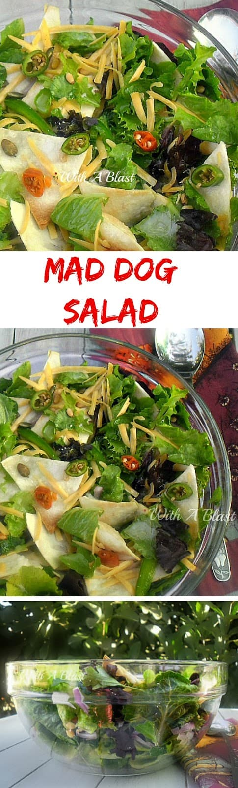 Everything nice and spicy in this Mad Dog Salad ! Crunchy Tortilla chips, herbs, lettuce, nuts, seeds and so much more #CrunchySalad #SaladRecipes #SpicySalad #TortillaChipSalad