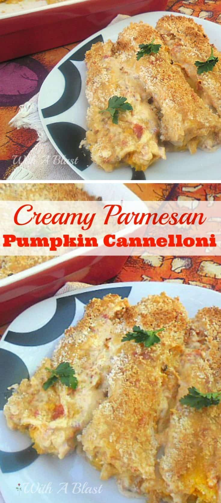 Creamy Parmesan Pumpkin Cannelloni has delicious pumpkin filling baked in a creamy tomato sauce - all topped with a crunchy Parmesan topping [side or meatless main dish] #PumpkinSide #MeatlessDinner #PumpkinPasta #EasyPumpkinPasta