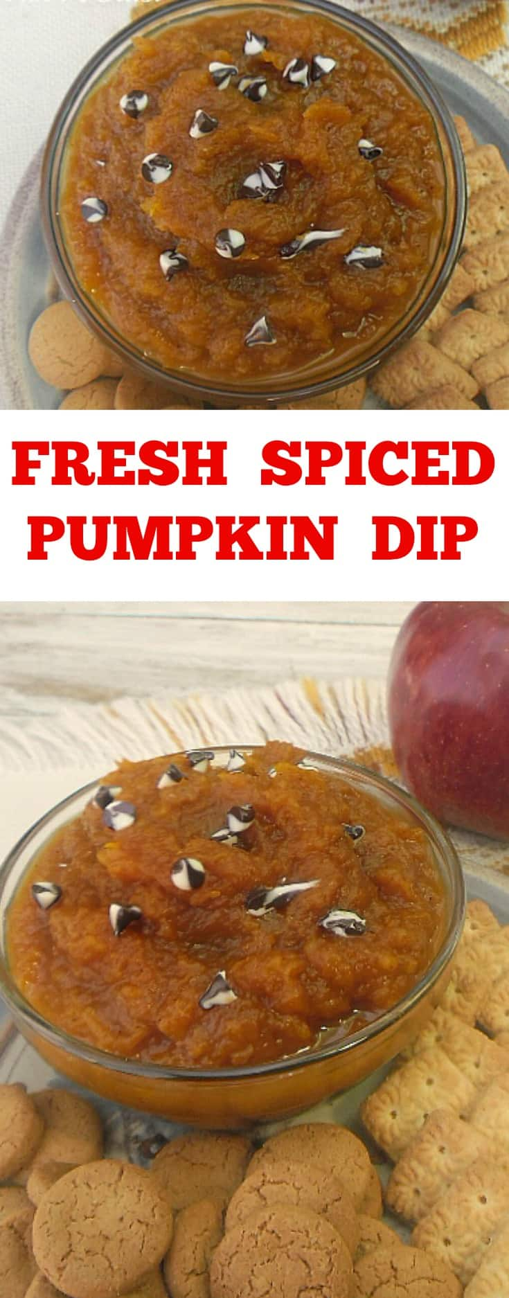 Fresh Spiced Pumpkin Dip ~ Delicious Spiced Pumpkin is so versatile - use it as a dip or as a spread on toast ~ serve warm or cold ! #PumpkinRecipe #PumpkinDip #Dips #FallRecipe #PumpkinSpread