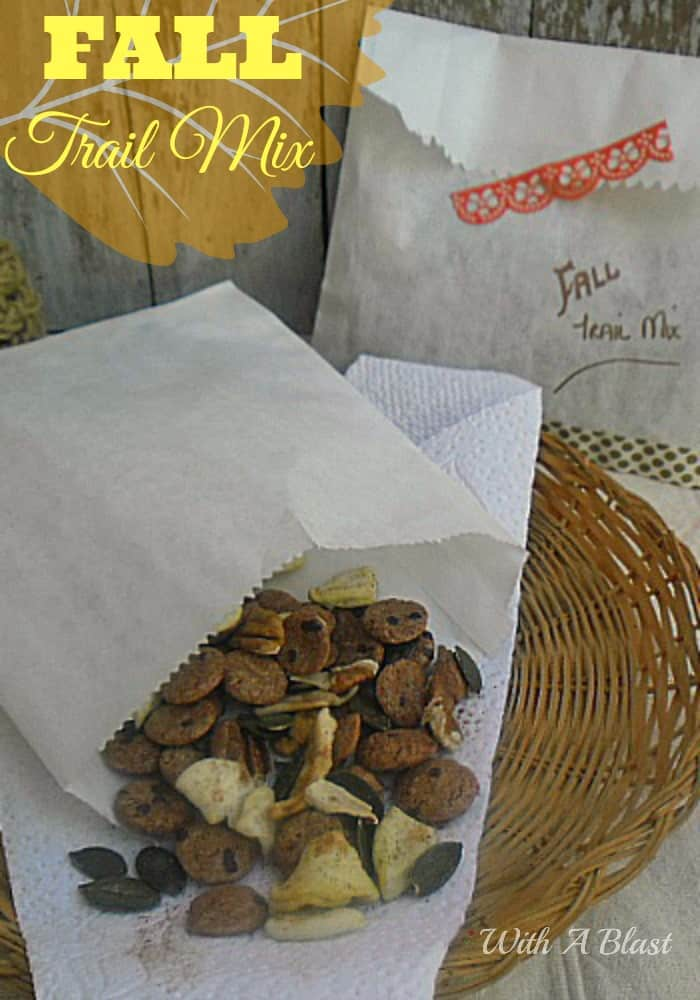 Fall Trail Mix ~ Every single ingredient is packed with Fall flavors and will give you the necessary boost needed for the day #TrailMix #FallRecipe #FallSnacks