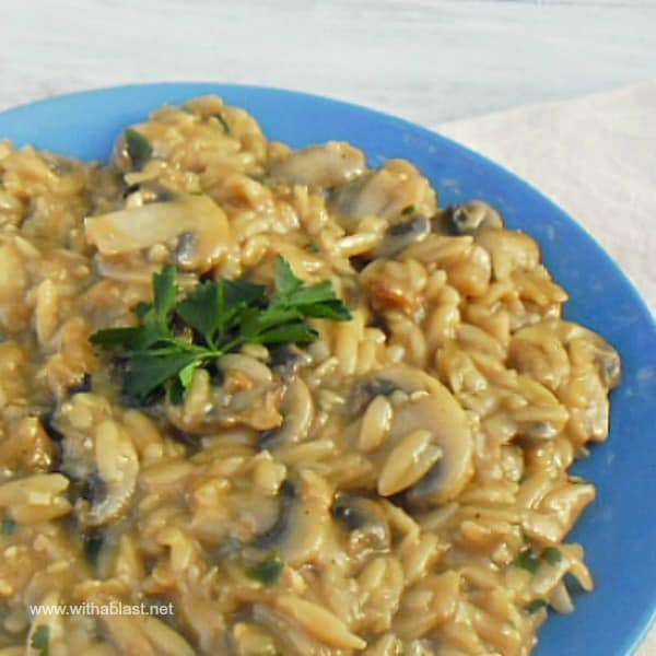 This Orzo and Mushroom Casserole is a comforting, meatless and vegetarian dish - quick and easy to make and on the table in under 25 minutes