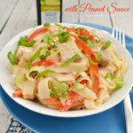 Chicken Fettuccini with Peanut Sauce {and Giveaway!}