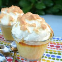 Old-Fashioned Velvet Pudding Cups