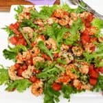 Shrimp Salad with Spicy Watermelon Salsa