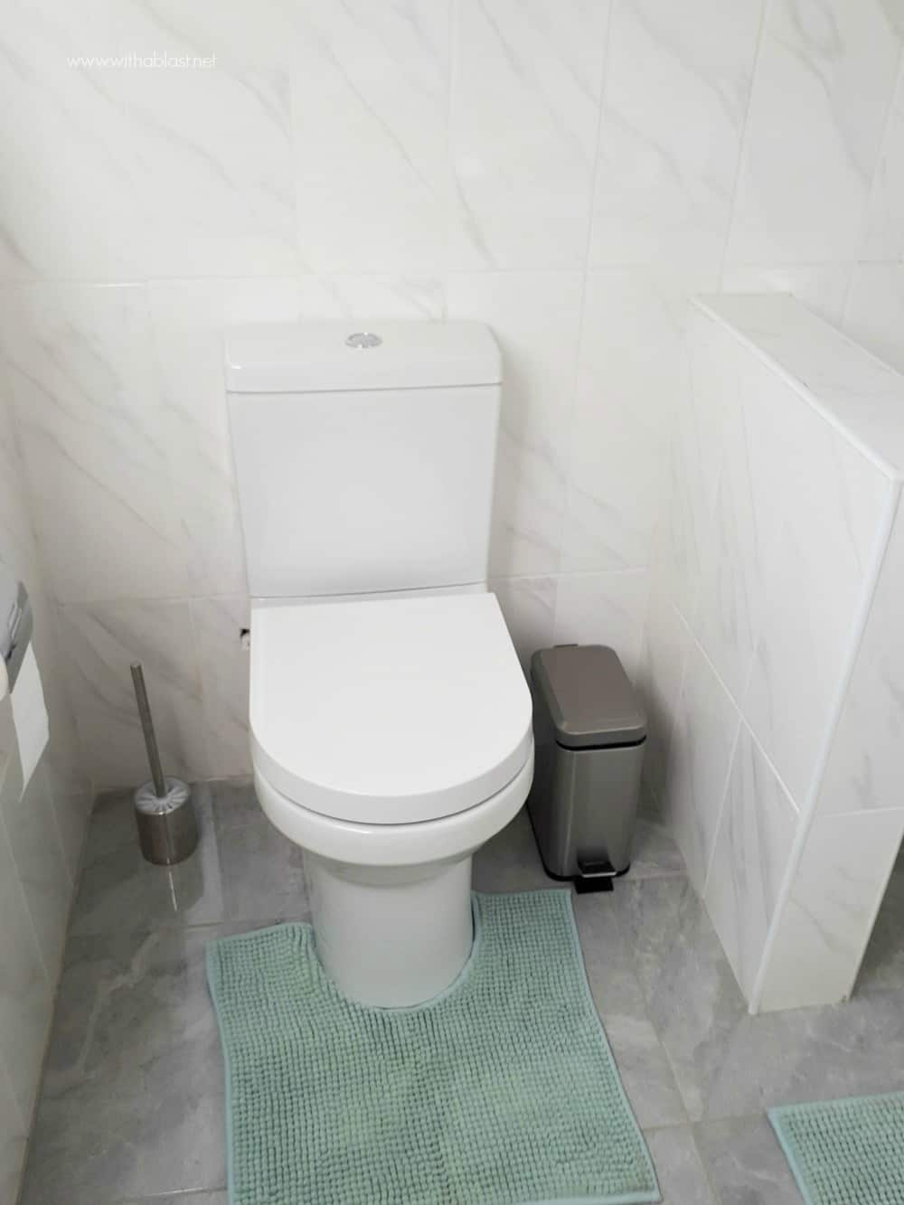 Bathroom Makeover [toilet / loo]